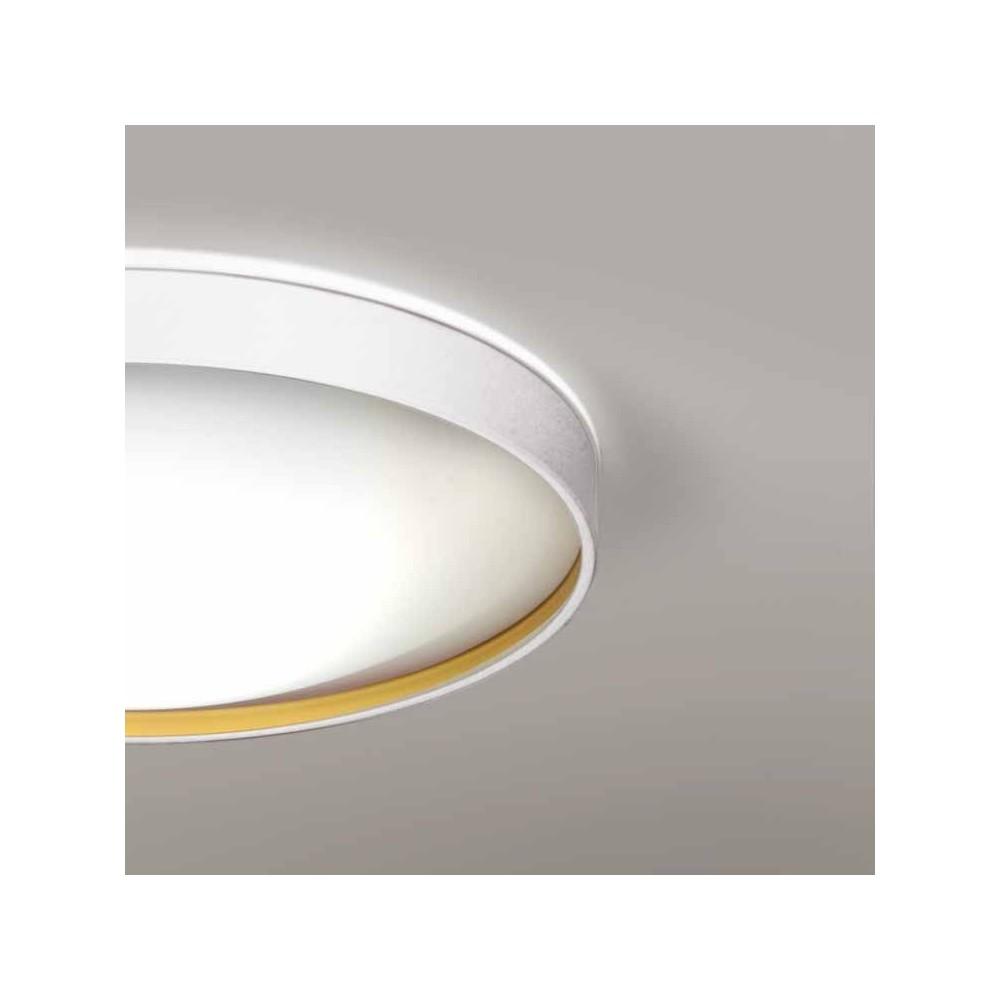 6481 MLN Dau Spot LED