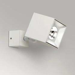 6881 MLN Dau Spot LED
