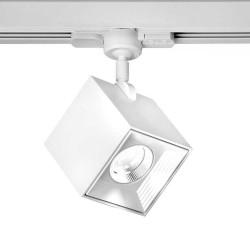 6890 MLN Dau Spot LED