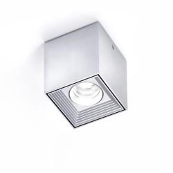 6877 MLN Dau Spot LED